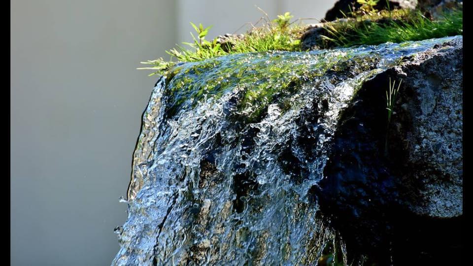 Vernetzungstreffen im Eigenthal zum Weltwassertag am 22. März