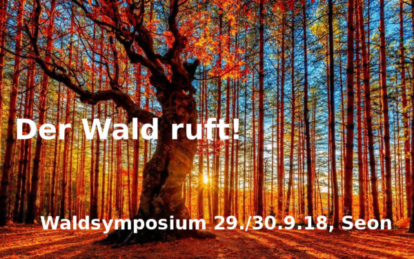 Waldsymposium 2018 von prokarma, 29. September