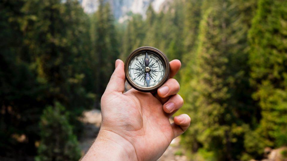 Feel Your Purpose – Zugang zu Sinnhaftigkeit – Lucerne Edition