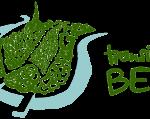 Newsletter Transition Bern